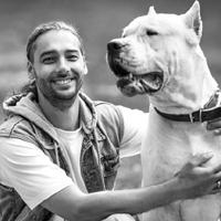 hunde_trainer